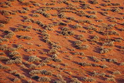 Kalahari - p1065m885916 by KNSY Bande