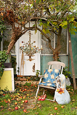 Folding chair at back door under apple tree with chandelier;  Isle of Wight;  UK - p349m920017 by Rachel Whiting