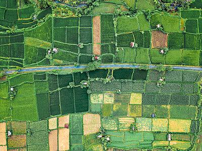 Indonesia, Bali, Keramas, Aerial view of rice fields - p300m2070193 by Konstantin Trubavin