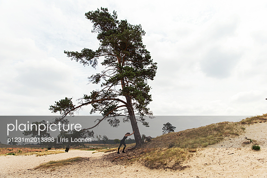 Frau lehnt sich gegen einen Baum - p1231m2013898 von Iris Loonen