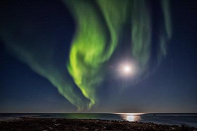 Northern Lights over Hudson Bay; Churchill, Manitoba, Canada - p442m1442406 by Robert Postma