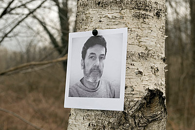 Photo attached to a tree - p564m1006838 by Dona
