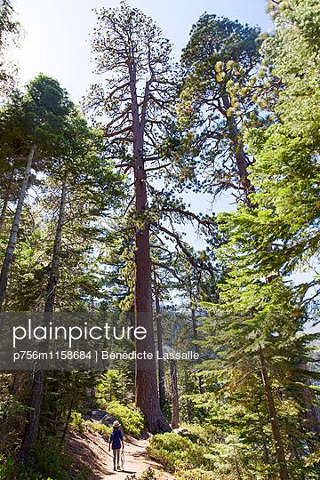 Kalifornien - p756m1158684 von Bénédicte Lassalle