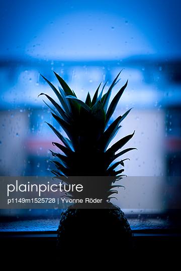 Pineapple at kitchen window - p1149m1525728 by Yvonne Röder