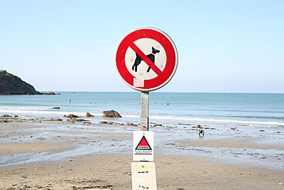 No dogs allowed on the beach - p1289m2064563 by Elisabeth Blanchet
