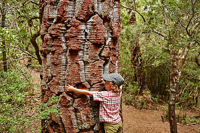 Chile, Puren, Nahuelbuta National Park, boy embracing an old Araucaria tree - p300m2069352 by Stefan Schütz