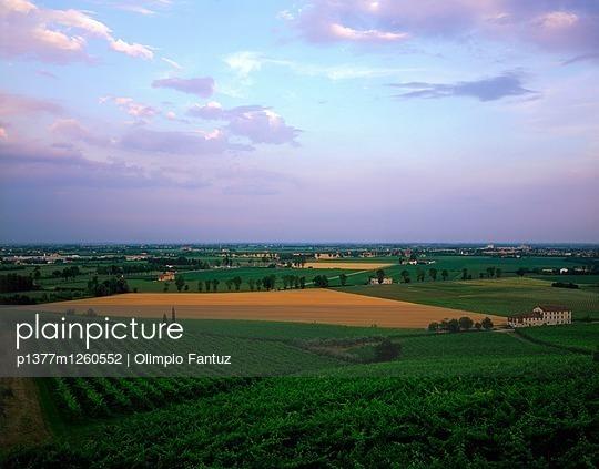 p1377m1260552 von Olimpio Fantuz