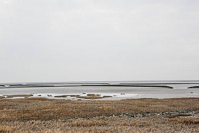 Wattenmeer - Landschaft - p1357m1510887 von Amadeus Waldner