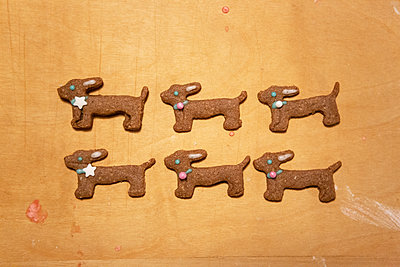 Six sausage dogs - p454m2128138 by Lubitz + Dorner