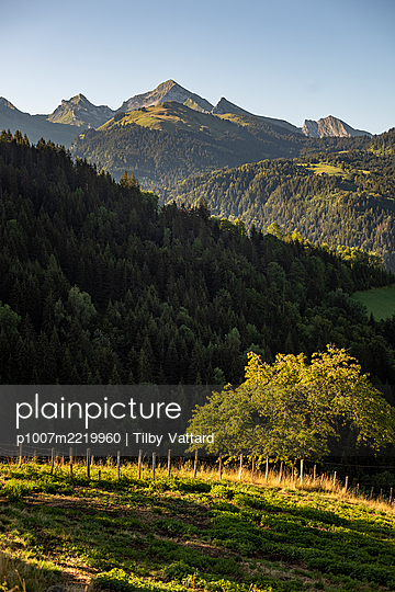 France, French Alps - p1007m2219960 by Tilby Vattard