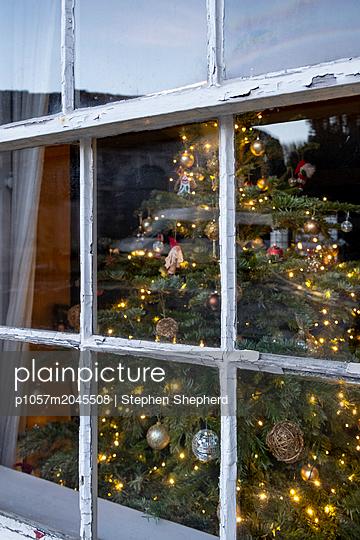 Weihnachtsbaum im Fenster - p1057m2045508 von Stephen Shepherd