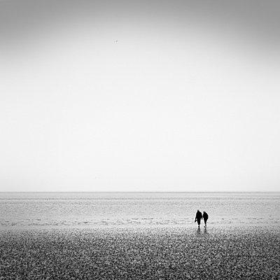 Nordsee - p992m721036 von Carmen Spitznagel
