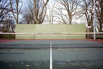 Fallen leaves on tennis court - p4341851 by Alin Dragulin