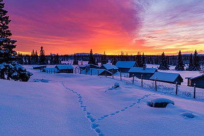 Sunset in winter - p312m2080233 by Mikael Svensson