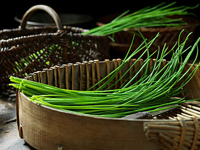 Chives - p429m2023008 by Diana Miller