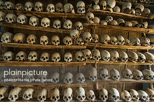 Head-hunted human skulls, collected by the Konyak Naga tribe,  North East India, October 2014. - p840m1164104 by Pete Oxford