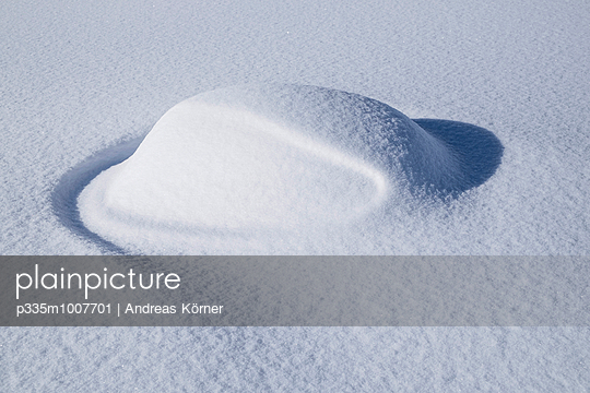 Snow covered - p335m1007701 by Andreas Körner