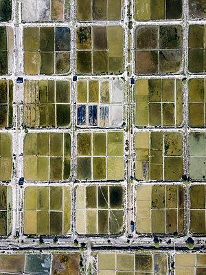Aerial view of Salt plantations - p1166m2094431 by Cavan Images