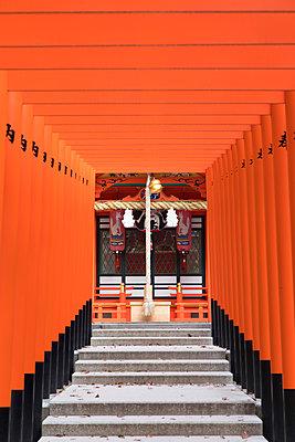 Torii gates at Ichinomiya shrine, Kobe, Kansai, Japan - p651m2033578 by Ian Trower