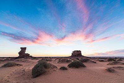 Sunset in the Sahara Desert near Timimoun, western Algeria, North Africa - p871m2101259 by Michael Runkel