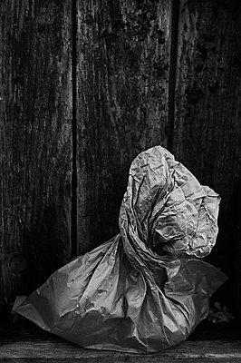 Paper bag - p1661m2245390 by Emmanuel Pineau