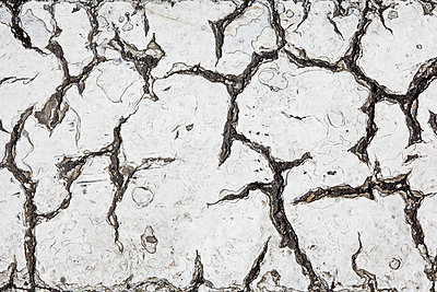 Cracks in tarmac, close-up - p300m1355869 by Tanja Luther