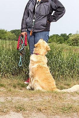 Hund mit Besitzerin - p739m1030848 von Baertels
