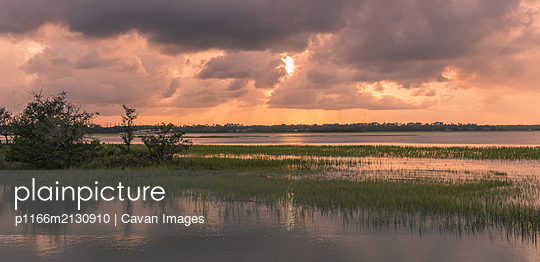 Pinckney Island natural park - p1166m2130910 by Cavan Images