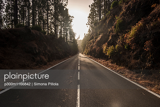 p300m1166842 von Simona Pillola
