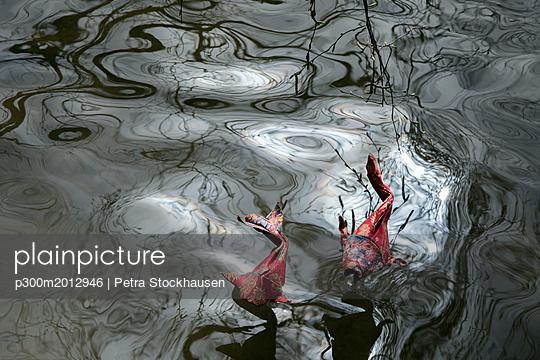 Origami cois, pond - p300m2012946 von Petra Stockhausen