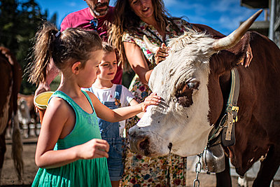 France, Girl strokes a cow - p1007m2219971 by Tilby Vattard