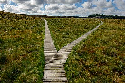 United Kingdom, Scotland, Highland, Cairns von Camster, wooden boardwalk - p300m1579384 von Lisa und Wilfried Bahnmüller