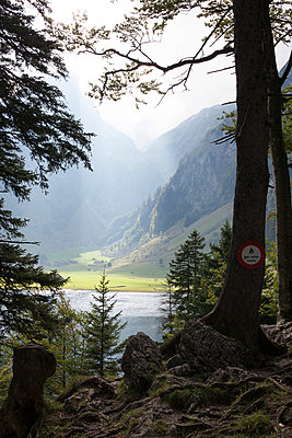 Mountain lake in Appenzell - p304m1050983 by R. Wolf