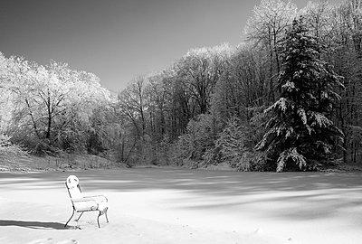 Stuhl im Schnee - p395m938509 von John Weber