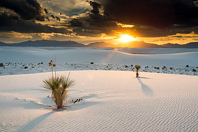 Sunset over White Sands National Monument, Alamogordo, New Mexico, USA - p651m2007184 by Tom Mackie