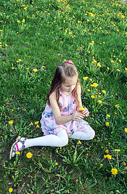 Girl picking flowers - p879m1584179 by nico