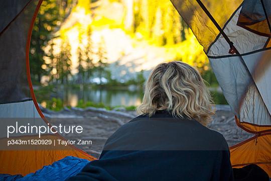 p343m1520929 von Taylor Zann