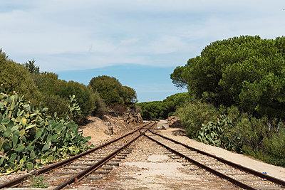 Schienen und eine Weiche - p1041m1042390 von Franckaparis