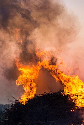 Qualmendes Feuer IV - p739m900749 von Baertels
