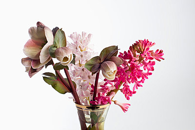 A bouquet of flowers, including Lenten roses (Helleborus orientalis) and hyacinth - p301m730901f by Larry Washburn
