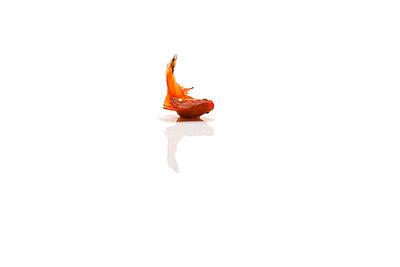 Goldfish - p4902334 by Anna-Maria Metzner