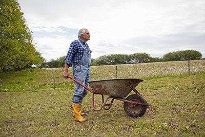 Gartenarbeit - p586m739316 von Kniel Synnatzschke