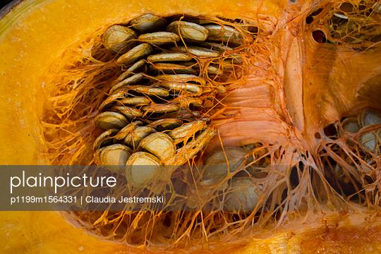 p1199m1564331 by Claudia Jestremski