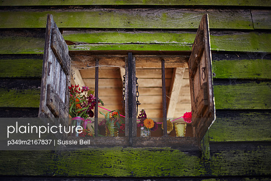 Open shutters of rustic wood cabin with cut flowers in Autumn  UK - p349m2167837 by Sussie Bell