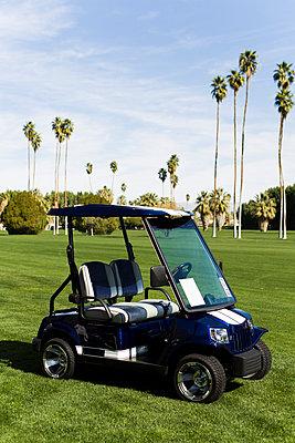 Golfmobil - p1094m900203 von Patrick Strattner