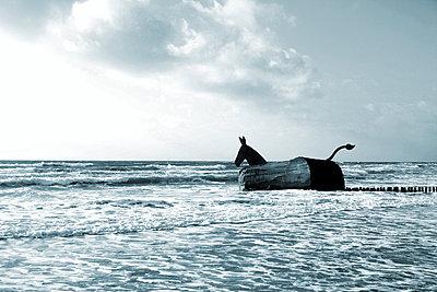 Pferdeskulptur in der Brandung - p1268m1111503 von Mastahkid