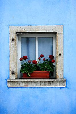 Window - p179m932392 by Roland Schneider