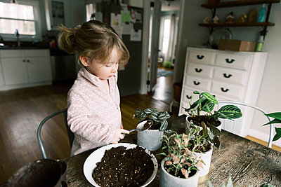 Toddler girl helping with re-potting plants and propagation. - p1166m2152343 by Cavan Images