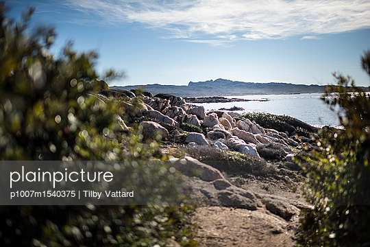 Corsican natural and wild seaside - p1007m1540375 by Tilby Vattard