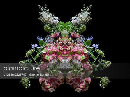 Blumengebilde  - p1294m2229747 von Sabine Bungert